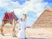 egypt vacation package with international airfare
